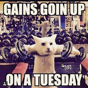 No excuses on Tuesday