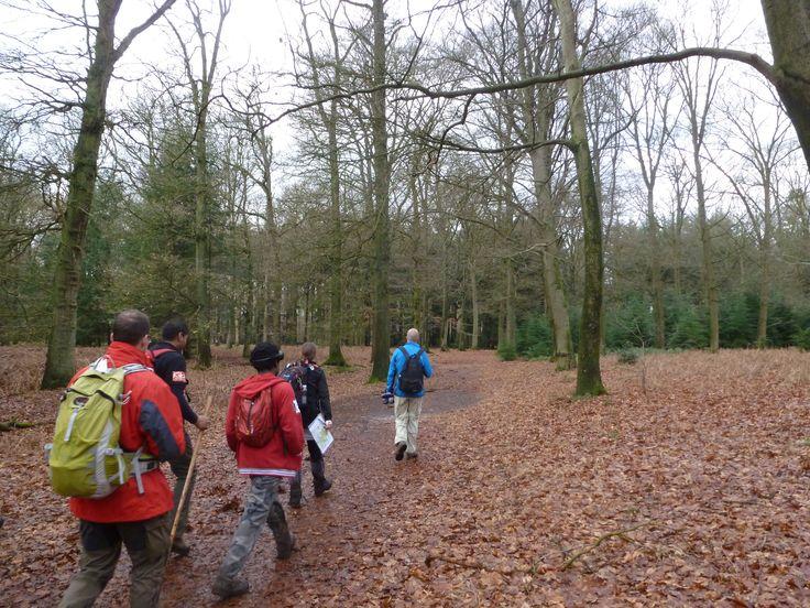 BLOG: 'Verslag bikkelwandeling (33 km) landgoederen Gorp en Roovert', 15 december 2012 #wandelen #natuur #Brabant