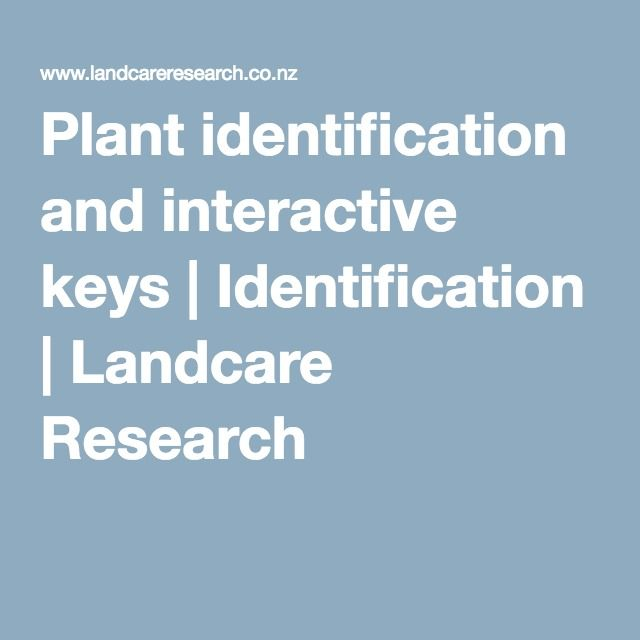 Plant ID and interactive keys