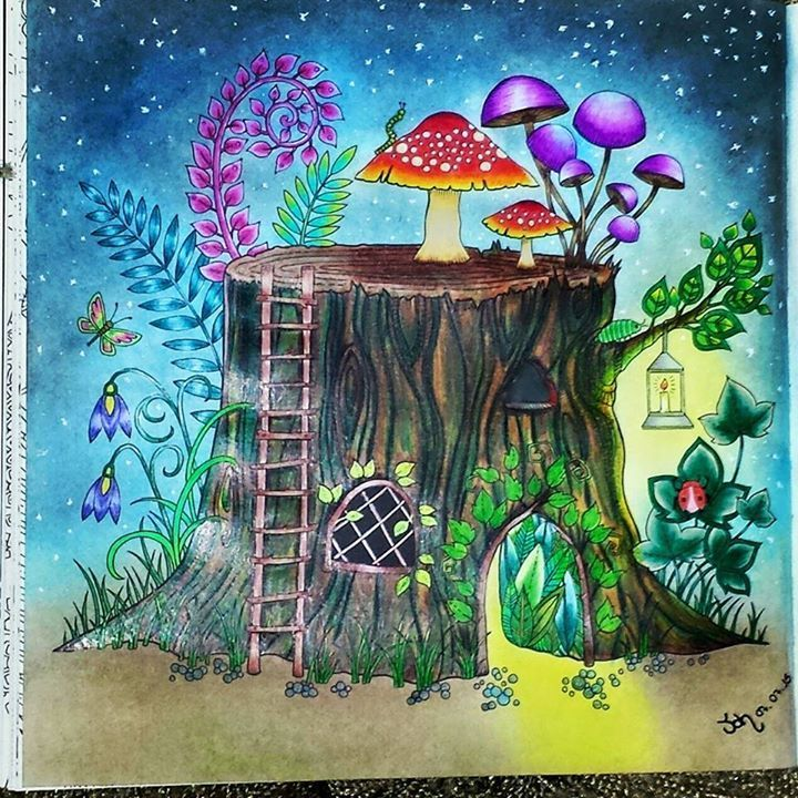 25 best ideas about Enchanted forest coloring book on