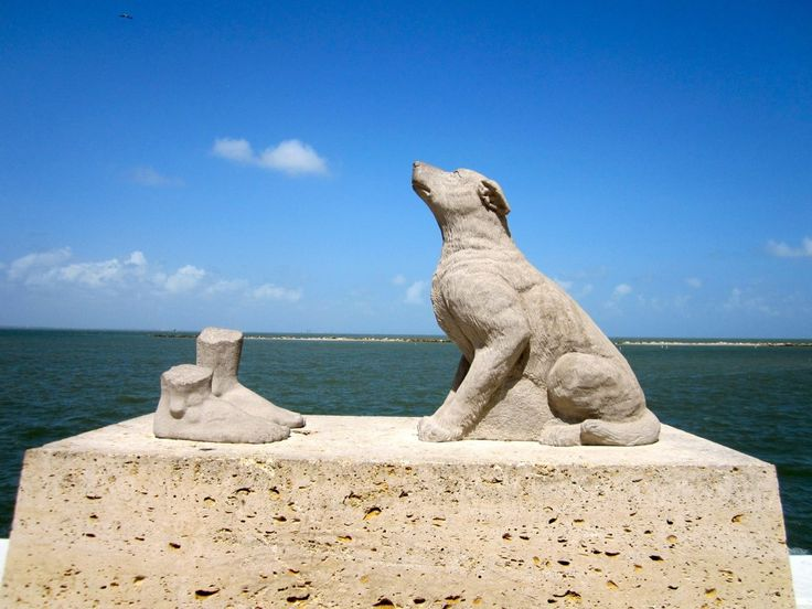 Fun and Free Things to Do in Corpus Christi Texas