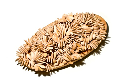 A Constant Grinding, brooch  Galia melon seeds, birch wood, aluminium, silver, steel, Karin Roy Andersson, 2011