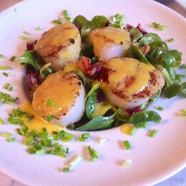 Jakobsmuscheln auf rot-grünem Salat Rezept | Küchengötter