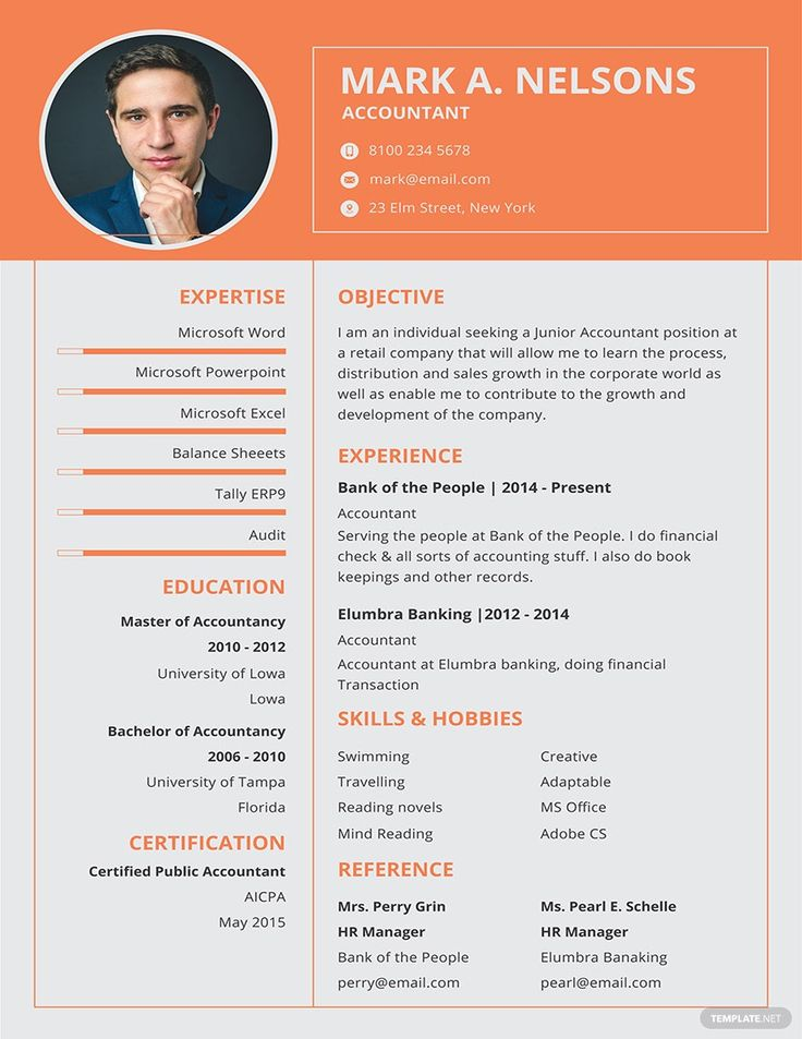 Free experienced accountant resume format in 2020
