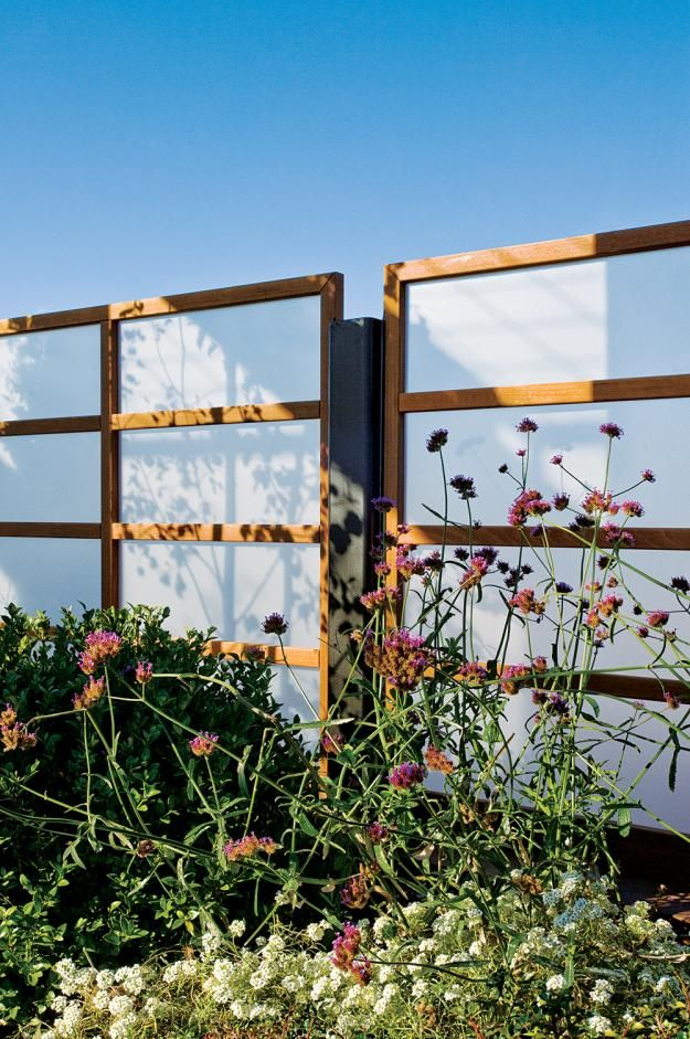 For a Chicago rooftop, designers at Hoerr Schaudt Landscape Architects mounted screens of ipe and frosted plexiglass onto steel posts; the screens block a utility area and serve as a backdrop to Verbena bonariensis, alyssum, and boxwood.