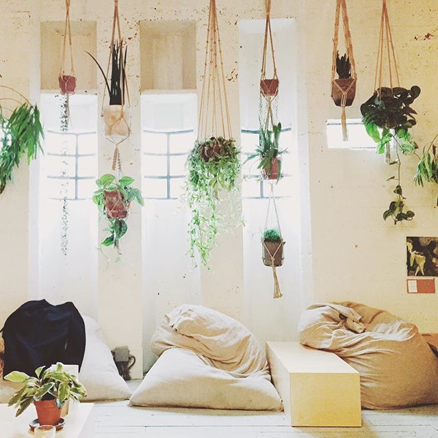 We love this cool plant hanger installation at Coffee and Coconuts in Amsterdam…