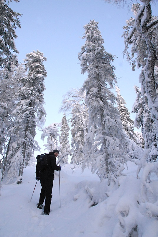 Snow shoeing at Koli National Park in Eastern Finland <3