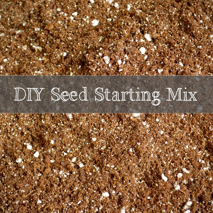 Save a ton of money by making your own seed starting mix.