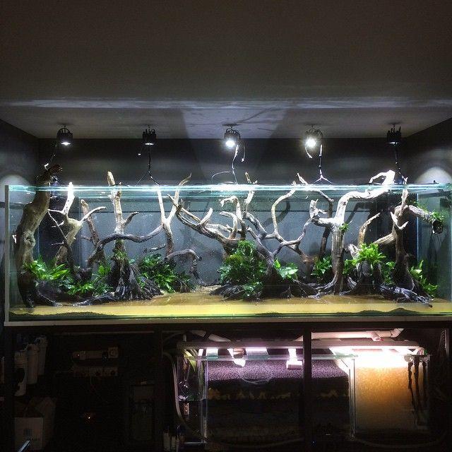 https://www.pinterest.com/heritagesmrd/aquascape/