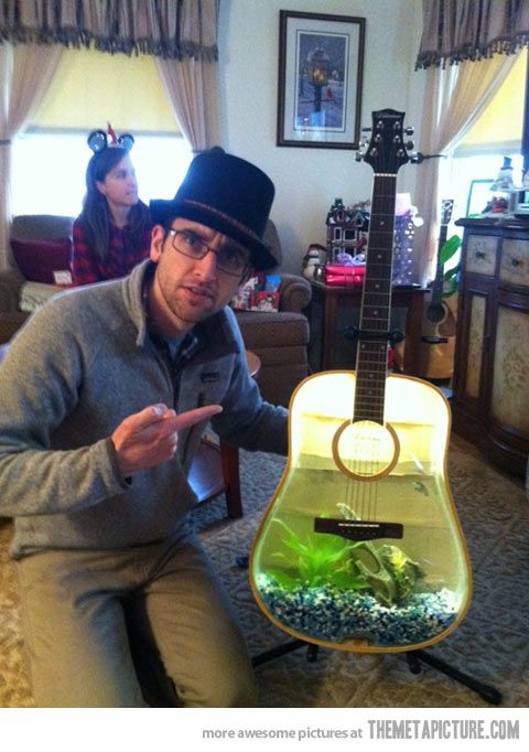 Fish tank made from acoustic guitar… If I find an old crappy guitar at Goodwill, this is what I'm doing