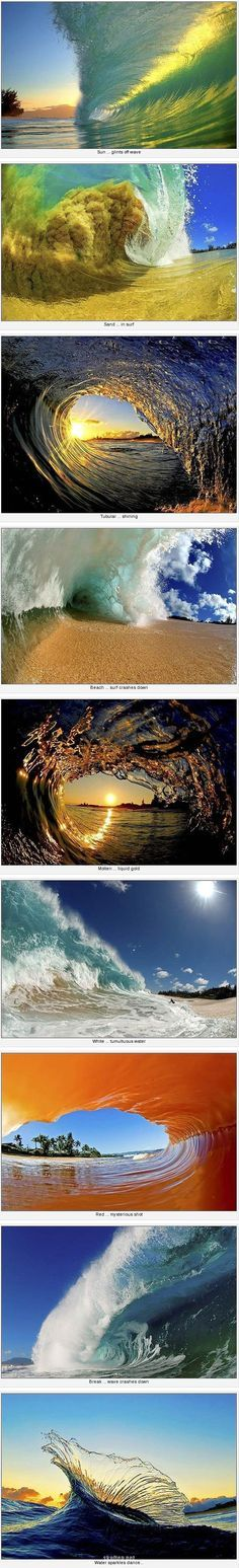 Just Some Amazing Waves #aromabotanical