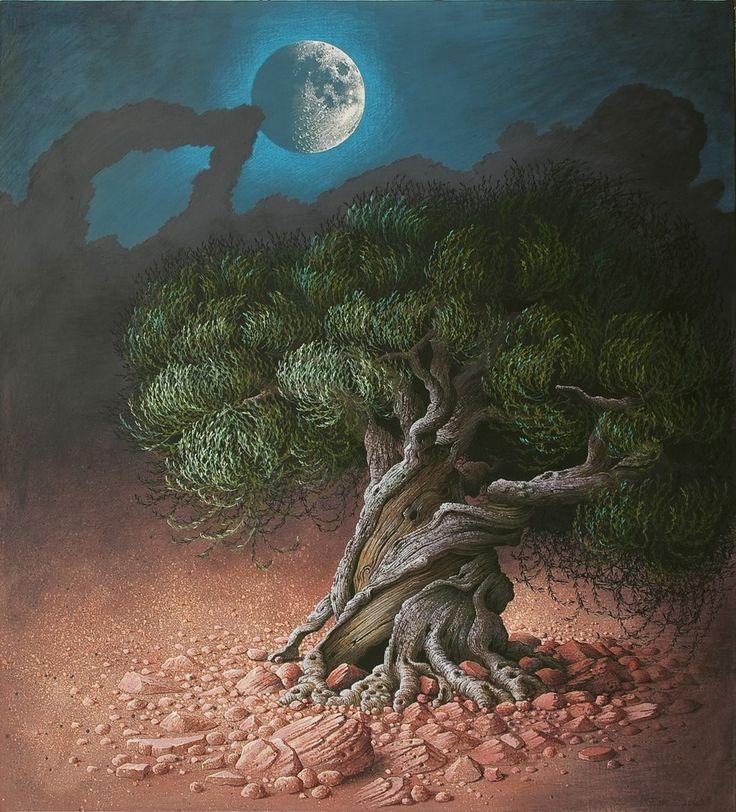 árboles | WAKAMI · la rueda del tiempo: TRECE LUNAS Y... UN POCO MÁS DE TRECE ...