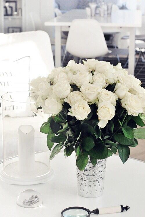 <3 Love White Roses