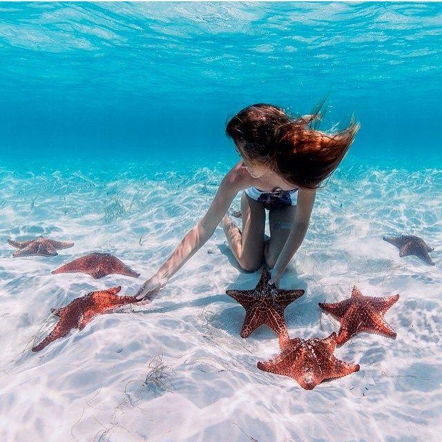 Starfish garden Great Exuma - Bahamas. Pic @ElenaKalis & @_BahamasGirl_ by…                                                                                                                                                                                 Mais
