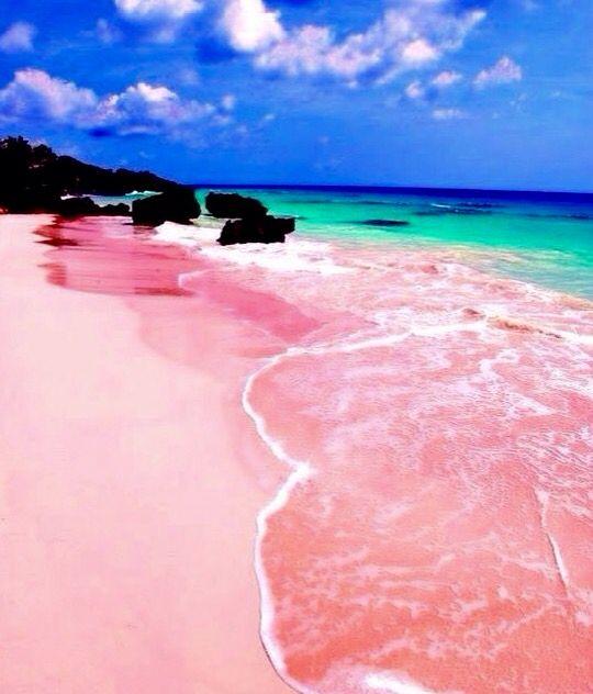 36 best bahamas images on pinterest eleuthera bahamas for Pink sand beaches in the bahamas