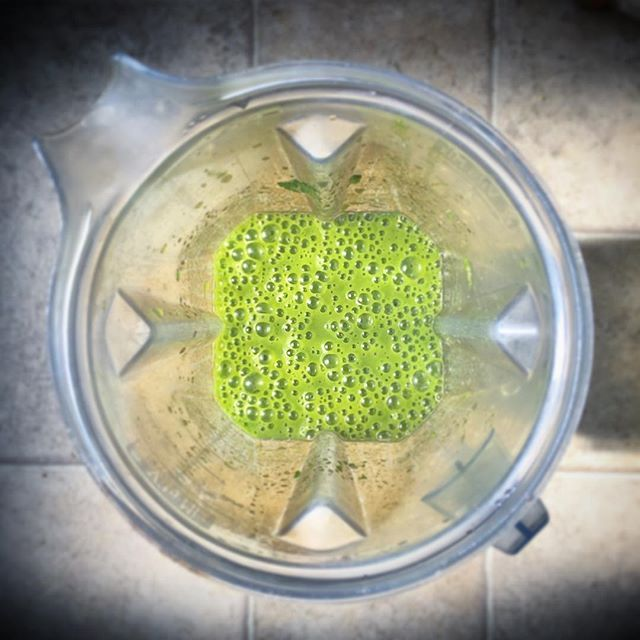 Favorite color: Gaia GREEN.  Love Your Body! Love Everybody! www.sarvaasuperfood.com    #sarvaasuperfood #loveyourbodyloveeverybody #superfood #superfoods #loveyourbody #smoothie #smoothies #vegan #foodismedicine #healthiswealth #organic #green #cacaoplus #gaiagreens #greens #chocolate #protein #organicfood #healthyfood #healthylifestyle #eatclean #juice #veggies #foodporn #favoritecolor #greensmoothie #vitamix #yummy #healthy #drinkyourgreens