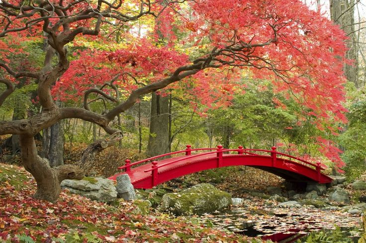 John B. Good Japanese Garden