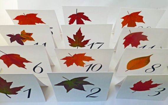 Autumn Wedding Table Number Real autumn leaves by LeafDecor, $25.00
