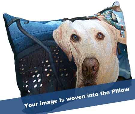 TK Extra Large Pillow - OUR PRICE:	$79.95 USD