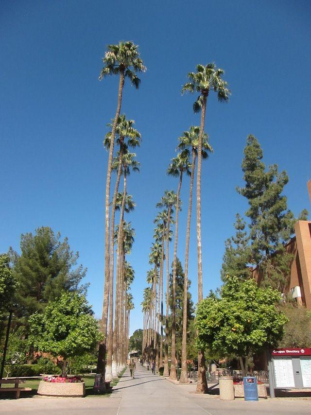 Photo tour for Arizona State University