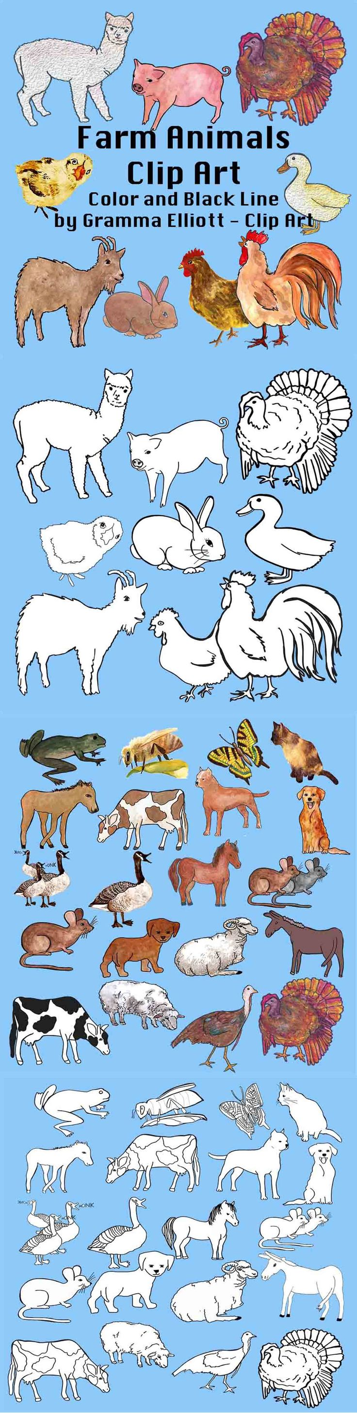 6 1 Farm Animals Clips includes a black line and color clip art image for each item: Alpaca, bee, butterfly, Cat, Chicken, Colt, Cow, Dog1, Dog2, Duck, geese, Goat, Goose, Hen, Horse, mice, Mouse, Mule, Pig, Puppy, Rabbit, Ram, Rooster, Sheep, Turkey male, Turkey female.  I hope you enjoy my Clip Art. You are welcome to use my clip art for educational purposes in your home or classroom or to make products to sell to teachers and parents.
