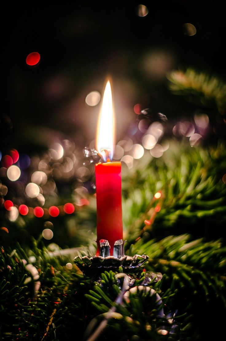 c r i s m s i m - Candle Christmas Lights