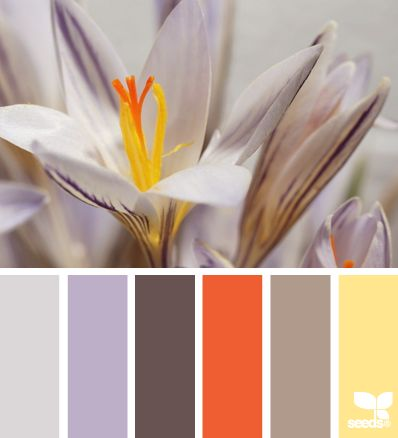 Light & lovely palette for a high Enthusiasm value. Also great for Innovation. #VoiceValues | flora tones via Design-Seeds | commentary via The Voice Bureau at AbbyKerr.com