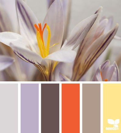#color #palette #colorpalette #colorscheme #paint #design #orange #purple #lavender #yellow