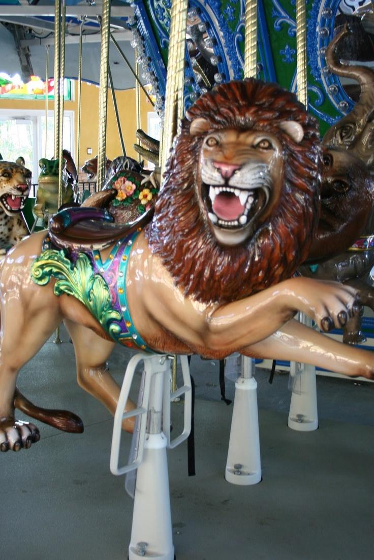 National carousel association denver zoo carousel african wild dog - Carousel