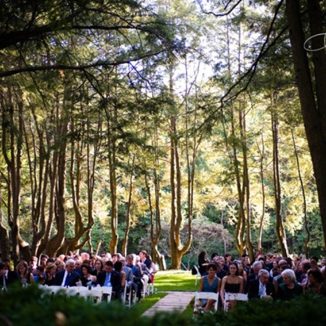 Seating arrangements for forest wedding