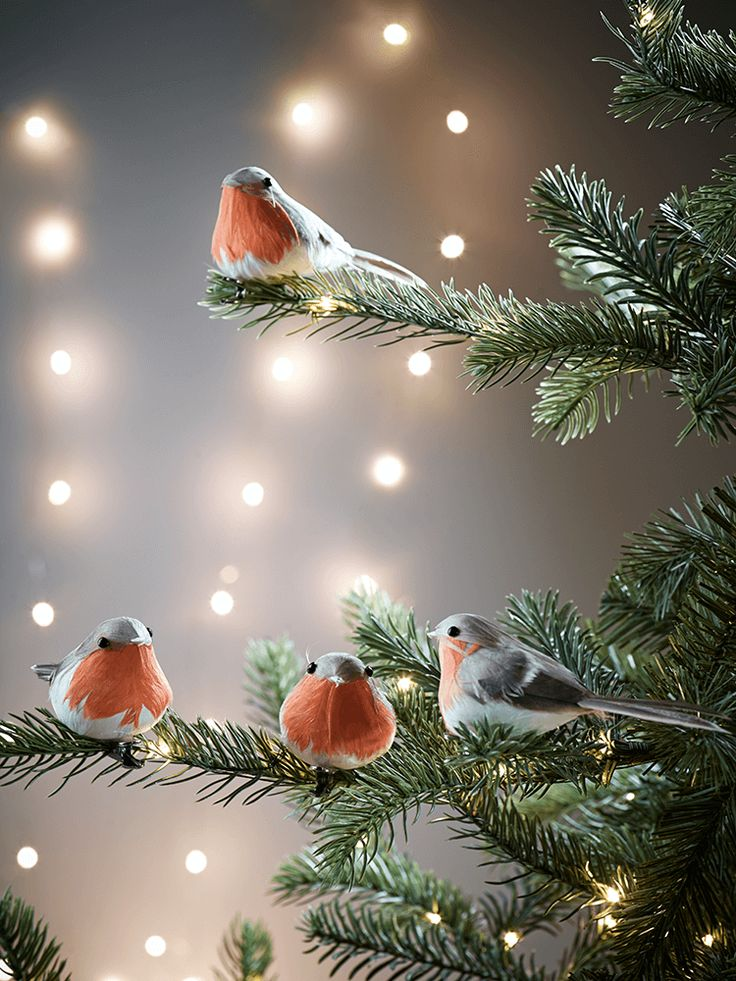 Beautifully crafted and perfectly traditional, our set of six robin clips will add a whimsical touch to your Christmas tree look. Display on our Premium Pre-Lit Christmas Tree for a classic look.