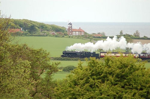 North Norfolk steam train, seen from Sheringham Park.