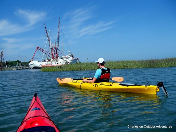Charleston Sc Dolphin Boat Tour