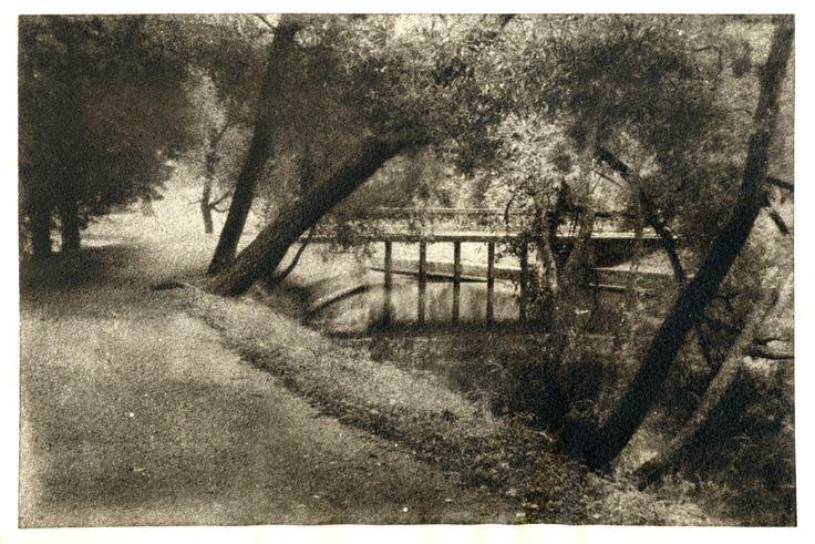 Павловск, oilprint