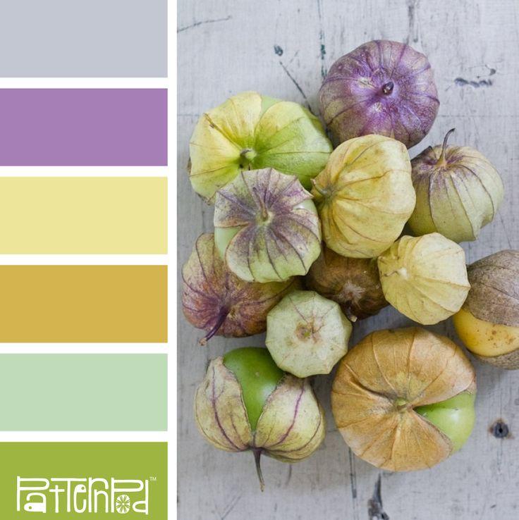 Tomatillo Treat #patternpod #patternpodcolor #color #colorpalettes