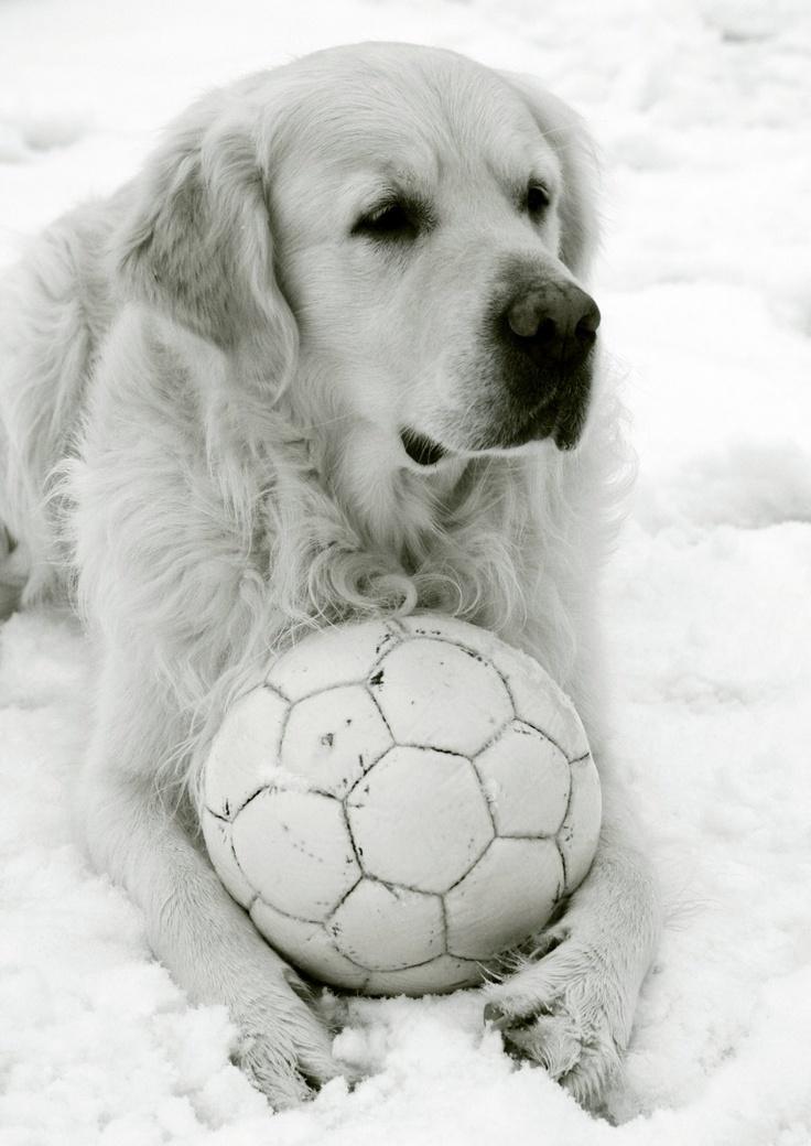 Giocando con la neve!!!