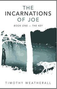 Fiction fantasy good read
