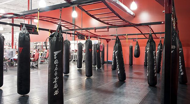 The Best Training Bags For Boxing Fight Gym Mma Gym Ufc