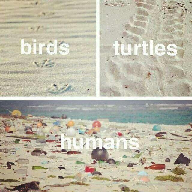 Sans commentaire hélas. .. empreinte sur la nature. ..