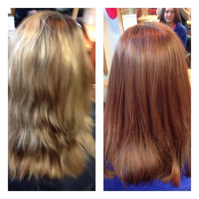 Color Correction Haircolor And Before After On Pinterest