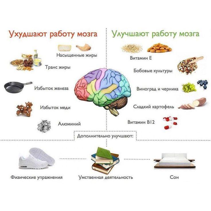 Продукты, способствующие хорошей работе мозга  #ЦентральнаяАптека #аптека #мозг…