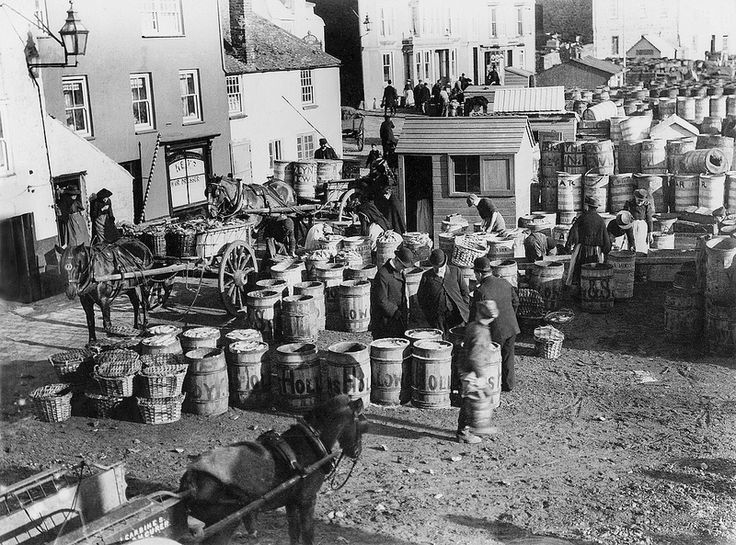 St. Ives, Cornwall - Another view of the activity around the slipway, with the barrels awaiting their turn to be packed with fish and then transported away on waiting carts.