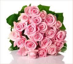 Resultado de imagen para rosas rosas
