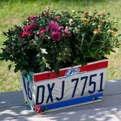 licence plate crafts   licence plate flower box   crafts