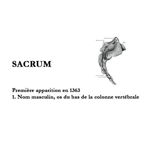 D'où vient le mot sacrum ? Que désigne t-il ? Est-ce encore d'actualité ? Que représente-il pour l'ostéopathe ?