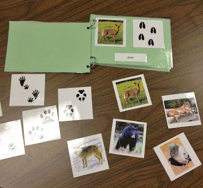 From The Hive: a few leaf - fall preschool ideas