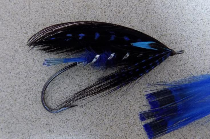 Black and blue spey pages fly fishing reel gals for Fly fishing feathers