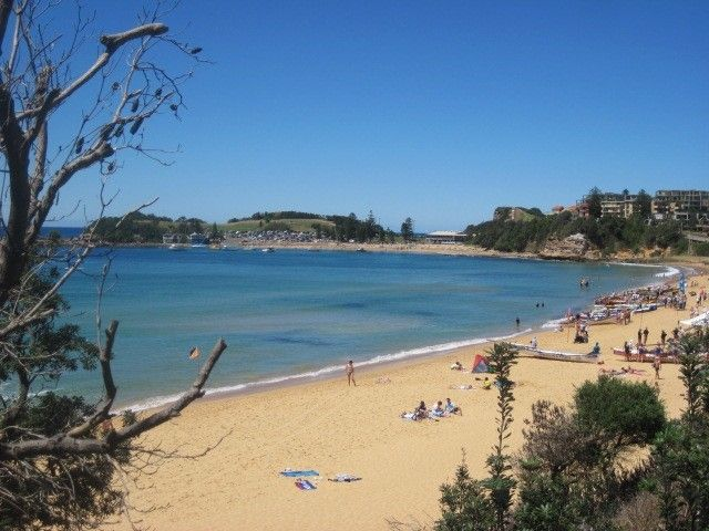 Terrigal Beach, NSW Australia- Things to do and see