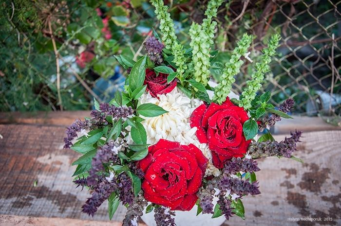 Basil, rose, chrysanthemum.