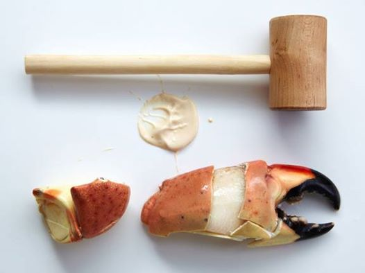 Florida Stone Crab Claws                                                                                                                                                                                 More